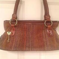 Brown Fossil Purse Photo
