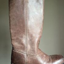 Brown Frye Boots 6 Photo