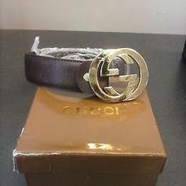 Brown Gucci Belt Men/ Gold Metal Buckle Photo