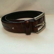 Brown Leather Brighton Belt Photo