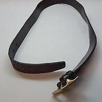 Brown Leather Coach Belt Women's Gold Toned Buckle  Photo