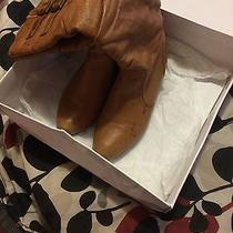 Brown Steve Madden Boots Photo