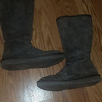 Brown Tall Ugg Boots Photo