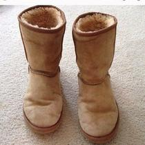 Brown Uggs Size 7 Photo
