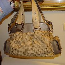 Bulgari Designer Handbag Photo