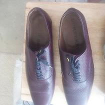 Burberry and Prada Shoes Size 14-15 Photo