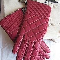 Burberry Bordeaux Gloves Nova Quilt Leather Sz. 7 Plaid Lining Retail 495 New Photo