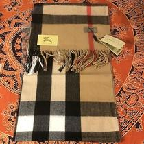 Burberry Cashmere Classic Check Camel Scarf Brand New &free Shipping Photo
