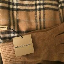 Burberry Cashmere Scarf and Gloves New With Tags Photo