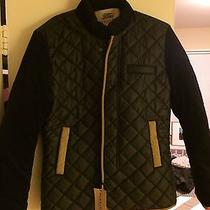 Burberry Mens Jacket Photo