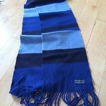 Burberry Scarf- Blue Stripe Photo