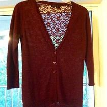 Burgundy Sweater With Full Lace Back  Photo