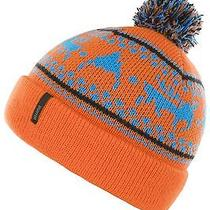 Burton Mountain Man Beanie (Clockwork) Photo