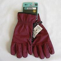 Burton Softshell Liner Crimson Men's Gloves Size Large New Photo