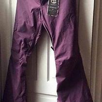 Burton Women Twc Native Snowboard Pant - Wigwam Purple Large Photo