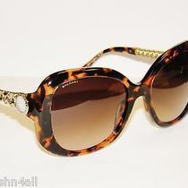 Bvlgari 8129hb 8129h 8129 Dark Red Havana/brown Grad. 529413 Bulgari Sunglasses  Photo