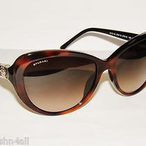 Bvlgari 8131b 8131 Top Havana on Black/brown grad.879/13 Newbulgari Sunglasses Photo