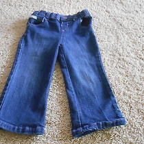 Calvin Klein Infant Blue Jeans Photo