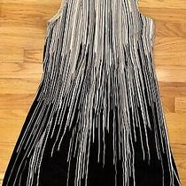 Calvin Klein Lined Black & White Fallling Streaks Dress Sz 2 Excellent Condition Photo