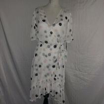 Calvin Klein White Dress With Pink Gray and Black Polka Dots. Size 8 Nwt Photo