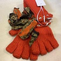 Camilla Fingerless  Gloves Photo