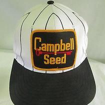 Campbell Seed Hat Snapback Trucker  Photo