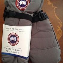 Canada Goose Men's Down Mitt Mitten Gloves Gray Size Xl New Photo