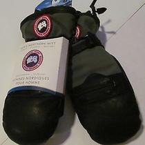 Canada Goose Men's Northern Mitt Gray/black Gloves Sz S  Brand New 150 Photo