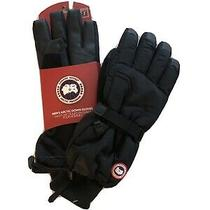 Canada Goose Nwt Men's Arctic Down Gloves in Black Size Medium 150 Photo