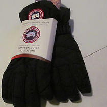 Canada Goose Woman Down Glove Black Gloves Sz M  Brand New  Photo