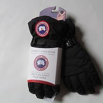 Canada Goose Woman Down Glove Black Gloves Sz S  Brand New  Photo