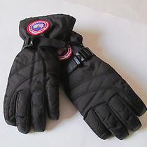 Canada Goose Woman Down Glove Black Gloves Sz Xs  Brand New  Photo