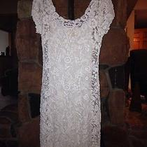 Candela Lace Dress Medium Photo