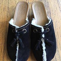 Car Shoe by Prada Black Suede Clogs Size 36 6 Photo