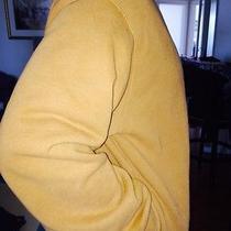 Carharrt Insulated Sweatshirt Photo