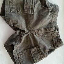 Carhartt Baby Boys Dark Brown Shorts. Photo