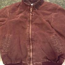Carhartt Coat Medium Photo