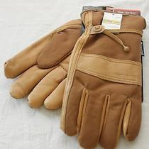 Carhartt Leather Duck Gloves Insulation Thinsulate Mens New Nwt Model A567 Photo