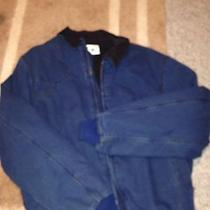 Carhartt Mens Blue Coat Photo