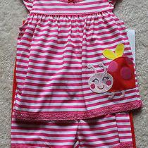 Carters Baby Girls Ladybug 3pc Pajamas Set Sz 12 Months Nwt  Photo