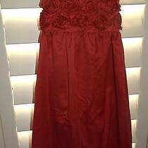 Carters Girls Red Dress Roses 4 Photo