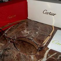 Cartier Sunglasses Eyeglasses  24k Heavy Plated Gold.....100% Authentic Photo