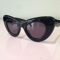 Celine Papillon Cl 41055/s (807/bn) 48-23-150 Authentic Sunglasses Free Shipping Photo