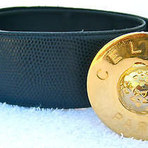 Celine Paris Navy Blue Leather Reptile Wide Belt Stud Gold Logo Buckle Womens S  Photo