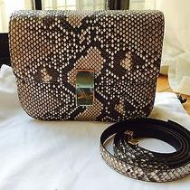 Celine Python Classic Box Photo