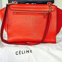 Celine Vermilion Red Lamb Photo