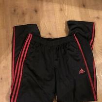 Cf5074 Mens Adidas Black Essential Tricot 3-Red Stripe Pants Medium Photo