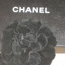 Chanel 1 Auth Black Velvet Flower Brooch Pin Camellia 5 3/4'' Stamped Photo