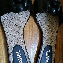 Chanel Classic Flats. New in Box. Size 9.5 Photo