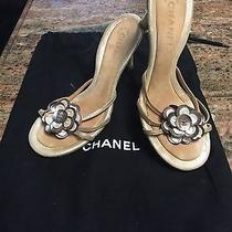 Chanel Mother of Pearl Flower Cream/brown Sandals Size 39 Photo